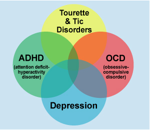 Understanding Benefits Of Adhd >> Tourettes Syndrome/Tic Disorder - Neurofeedback AllianceNeurofeedback Alliance